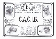 CACIB.jpg